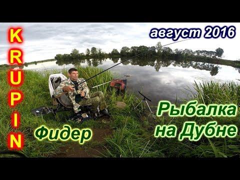 рыбалка на дубне май