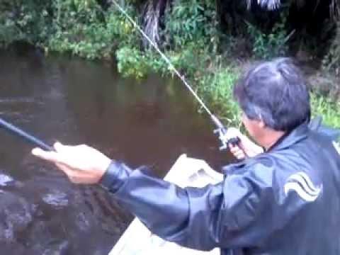Pescaria de Piau Rio São Bento que desemboca no Rio Ivinhema