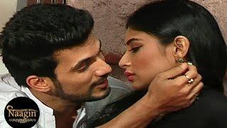 Naagin   Shivanya Falls In Love with Ritik   9th January 2016 EPISODE