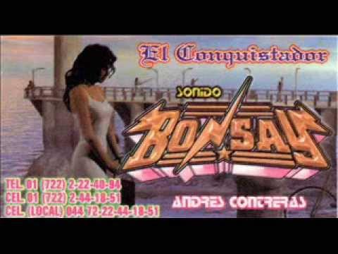 2 BONSAY EL LINDERO AMEALCO PRESENTACION