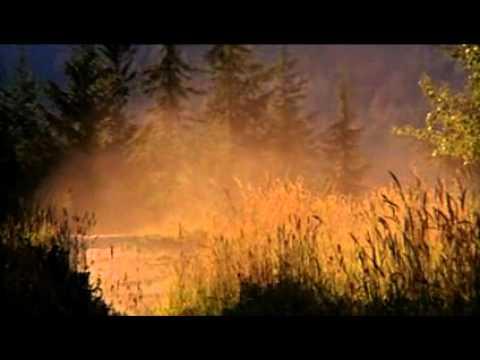 Brandon Semenuk - New World Disorder 9