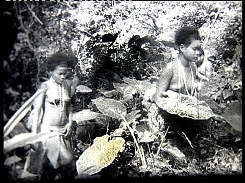 Xxx Mp4 Orang Asli In The Malayan Jungle 1947 2 3gp Sex