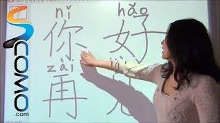 Cómo decir Hola y Adiós en Chino - Clases de Chino IX