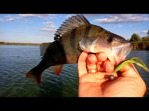 рыбалка осень 2016 год