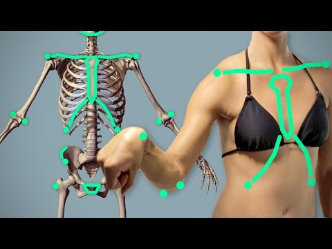 Landmarks: Key to Successful Anatomy Drawings - Arm Critiques