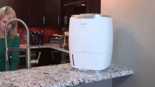 Winix HumidiPür™ Triple Action Humidifier