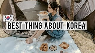 🇰🇷Korean Internet Cafes & Picnic at Han River