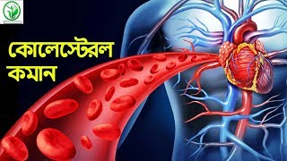 কোলেস্টেরল কমান ৪০ দিনে Cholesterol