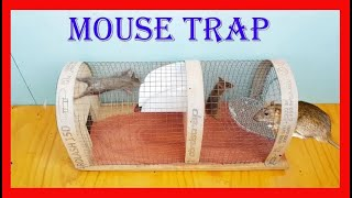 How to Make Mouse Trap - Mouse/Rat trap Easy - Amazing quick Mouse/Rat trap! 100