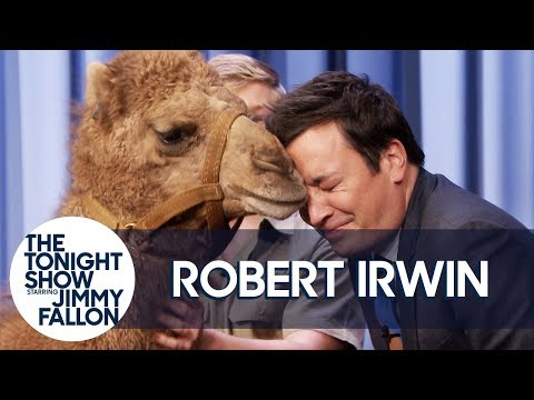 Robert Irwin s Baby Camel Kisses Jimmy on the Lips