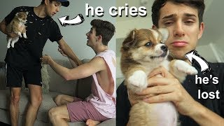I LOST YOUR DOG PRANK ON BOYFRIEND! He Cries A LOT..