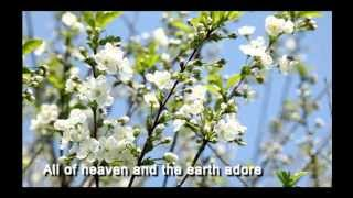 Passion 2015 featuring Chris Tomlin: The Saving One (Lyric Video)