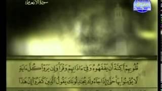 الجزء السابع (07) من القرآن الكريم بصوت الشيخ علي الحذيفي