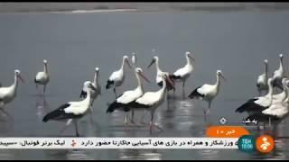 Iran Aras Dam region, Pol-Dasht county, Tourism attractions جاذبه گردشگري سد ارس پلدشت ايران