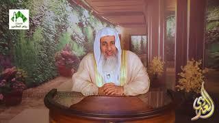لقاء الفتاوى (8) للشيخ مصطفى العدوي 27-10-2017