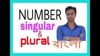 Number singular plural in Bengali/ bangla