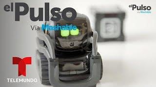 El Pulso | POWER UP: Vector de Anki review en español: robot de casa con personalidad | Telemundo