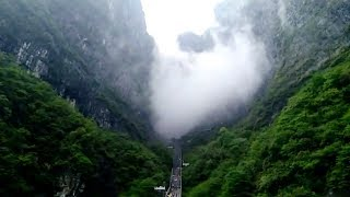 Mystic fog passes through mountains where Avatar was filmed