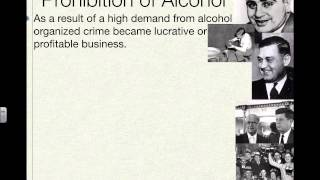 Prohibition and the the 18th Amendment Flip Video Part 1