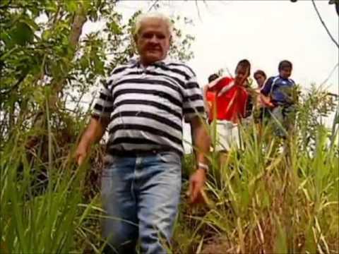 Globo Repórter Avô salva neto atacado por cobra de cinco metros com as próprias mãos