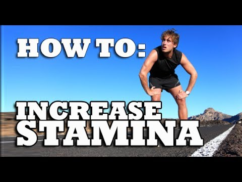 3 Exercises to Increase STAMINA - Endurance for a Fight