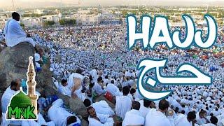 Hajj 2018 | Arafat Day scenes | Maidan e Arafat Makkah
