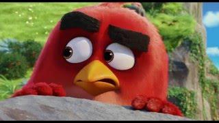 Trailer 2: Angry Birds: De Film - Nederlands gesproken
