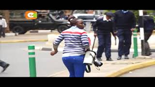 Bees attack avert Jubilee-NASA supporters clash outside Supreme Court