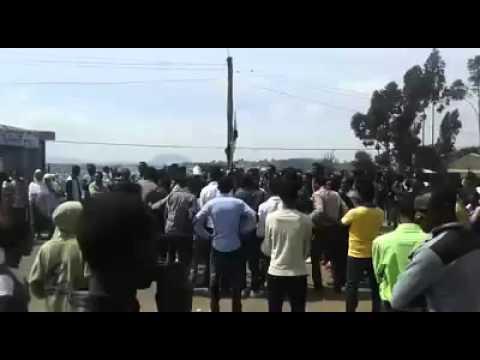 Xxx Mp4 Breaking News  OromoProteststoday In Addis Aba 3gp Sex