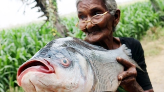 Fish Fry Recipe    Simple and Delicious Fish Fry By My Granny's