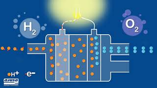 How does a hydrogen fuel cell work?