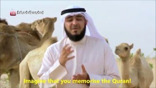 This should inspire you to memorise the Quran!