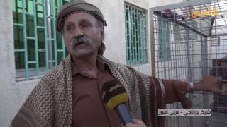 مواطن يربي في منزله أنثى نمر من الفصيلة العربية المهددة بالانقراض في عدن | تقرير: مروى السيد