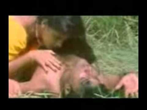 Xxx Mp4 Mallu Cine Sex Mp4 3gp Sex