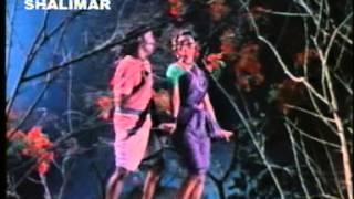 mutyamalle merisipoye  video song