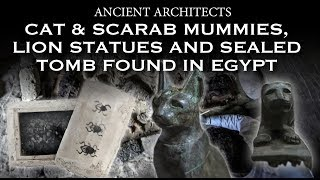 Cat & Scarab Mummies, Lion Statues and Sealed Tomb Found in Egypt | Ancient Architects