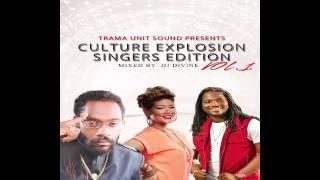 Culture Reggae Mix: Chronixx, Jah Cure, Alaine, Christopher Martin, Busy Signal & More