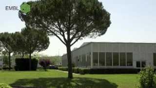 The European Molecular Biology Laboratory (EMBL) - Basic Research at it