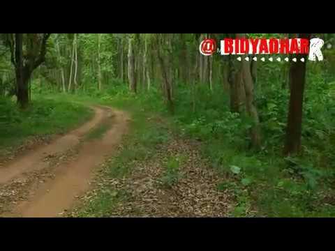 Xxx Mp4 Adivasi Ho Munda Romantic Video 3gp Sex