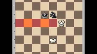 وزير ضد حصان queen v knight