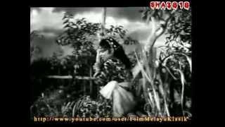 Lanchang Kuning (1962 ) Full Movie