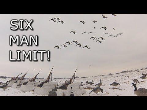 Xxx Mp4 Six Man Goose Limit Late Season Cornfield Hunt 3gp Sex
