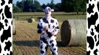 la danse de la vache (parodie de psy gangnam style)