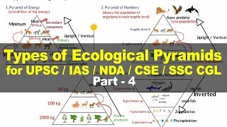 Types of Ecological Pyramids - Energy, Biomass, Numbers | Environment and Ecology for UPSC Part 4