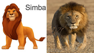 Timon And Pumbaa In Real Life