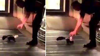 Cop Carefully Tries to Help Skunk With Cup on Its Head Without Getting Sprayed
