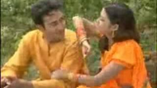 Amar Ekta Sathi chilo s.d.robil.wmv