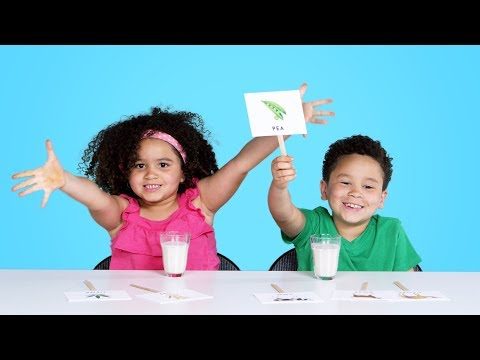 Kids Try Guess That Milk Challenge Kids Try HiHo Kids