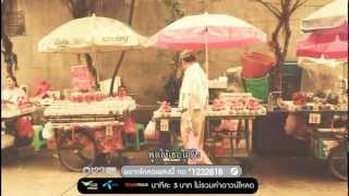 สาวเซี่ยงไฮ้ - Cocktail [Official MV]