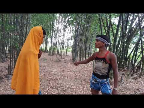 Xxx Mp4 Jeet Funny Dailoge Desi Sunny Deol And Kajal 3gp Sex